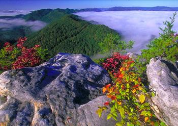 nationalparks2.jpg